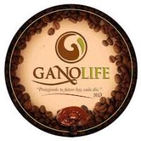 Ganolife: The MLM Coffee Competition Is Heating Up With Ganolife!