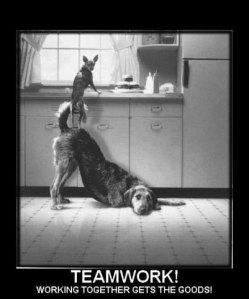MLM Team Work